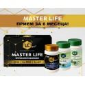 MASTER LIFE BOX QH4 + LL-PRO + LL-AF-01 капсули 3x60бр.